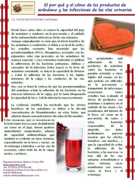 arandanos 1