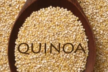thumbnail_1380042907_quinoa